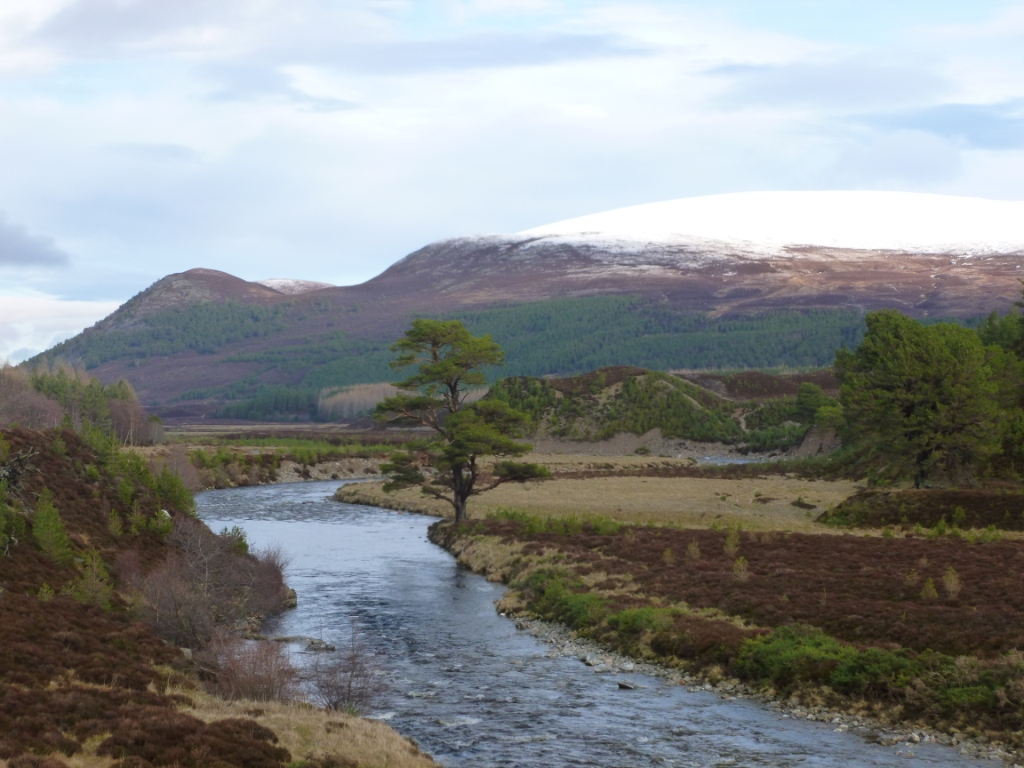 Glenfeshie & Killiehuntly