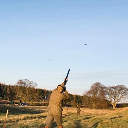 Are You Ready for the Pheasant & Partridge Season?