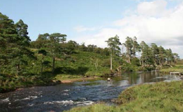 The River Inver