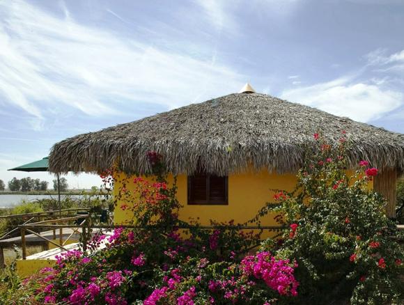 Pichiguila Club, Mexico